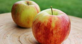 Dieta owocowa - hit czy kit?