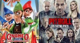 Gnomeo i Julia oraz Pitbull.Ostatni pies - w kwietniu w kinie BiFK