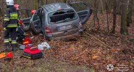 Prawie 2,8 promila - nietrzeźwy kierowca wypadł z trasy koło Sokołowic