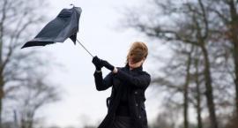 Ostrzeżenie meteo - Uwaga na bardzo silny wiatr