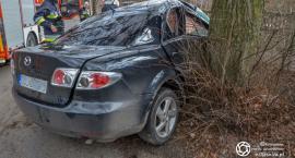 Wypadek w Osadzie Leśnej - interweniował śmigłowiec LPR