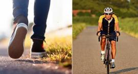 Piesi i rowerzyści na celowniku oleśnickiej drogówki
