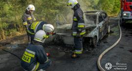Pożar BMW oraz lasu koło Posadowic