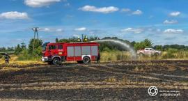 Pożar zboża w Gorzesławiu