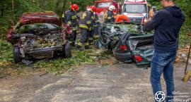 Drzewo runęło na przejeżdżające samochody na drodze DK25 - interweniował śmigłowiec LPR - VIDEO