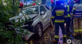 Miodary - auto wpadło na drzewo - jedna osoba odniosła obrażenia