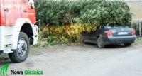 Drzewo przygniotło samochód