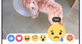 Nowe ikony facebooka