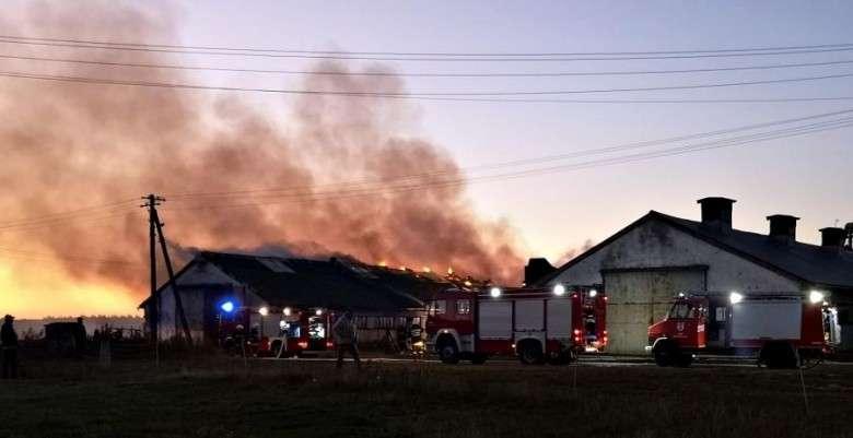 Pożary, Pożar magazynu kukurydzą - zdjęcie, fotografia