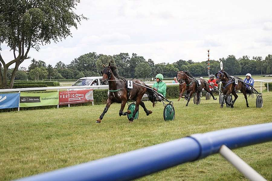Wyścigi konne, Derby kłusaków Patryk wrocławskich Partynicach - zdjęcie, fotografia
