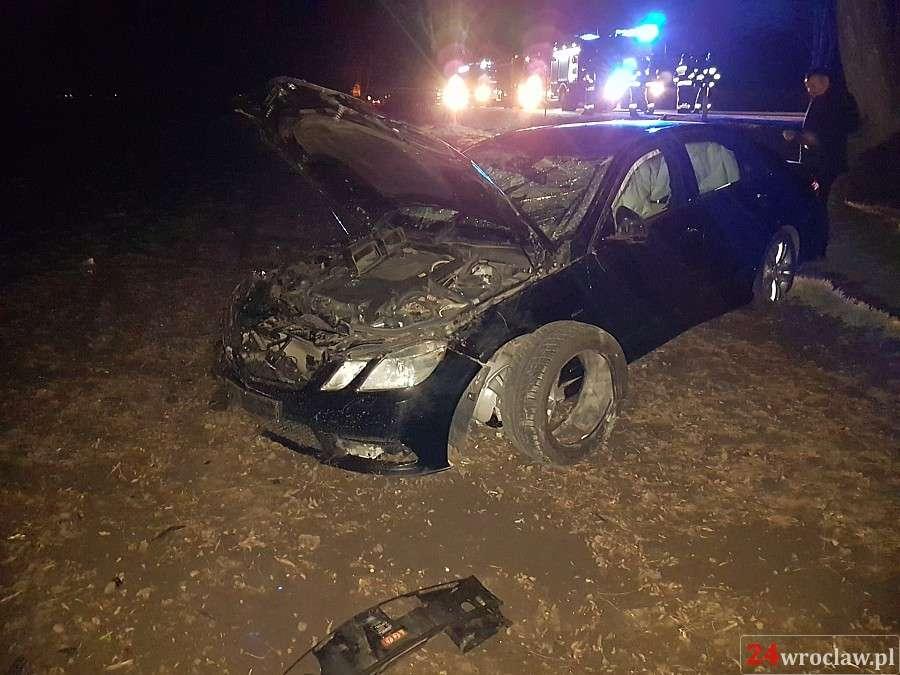 24wroclaw, Mercedes zderzył dzikiem - zdjęcie, fotografia
