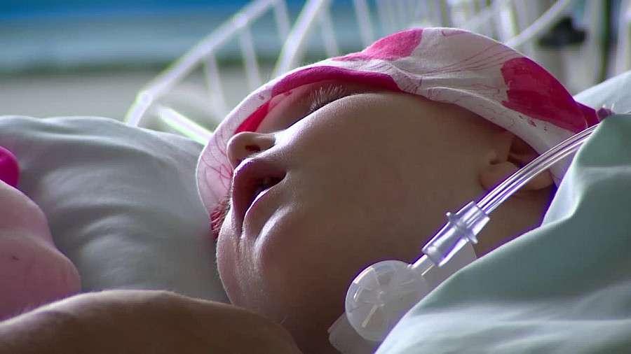 24wroclaw, Główkę Laury przebiły widły Miała procent szans przeżycie Teraz potrzebuje implantu - zdjęcie, fotografia