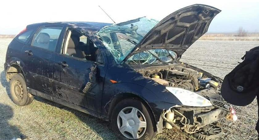 Wypadki drogowe, Dachowanie Gniechowicami - zdjęcie, fotografia