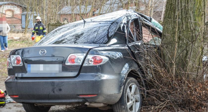 Wypadki drogowe, Mazda uderzyła drzewo - zdjęcie, fotografia