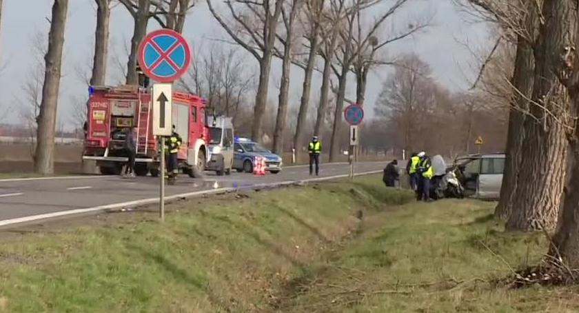 Wypadki drogowe, wypadki przez jelenia Zginęła jedna osoba zostało rannych - zdjęcie, fotografia