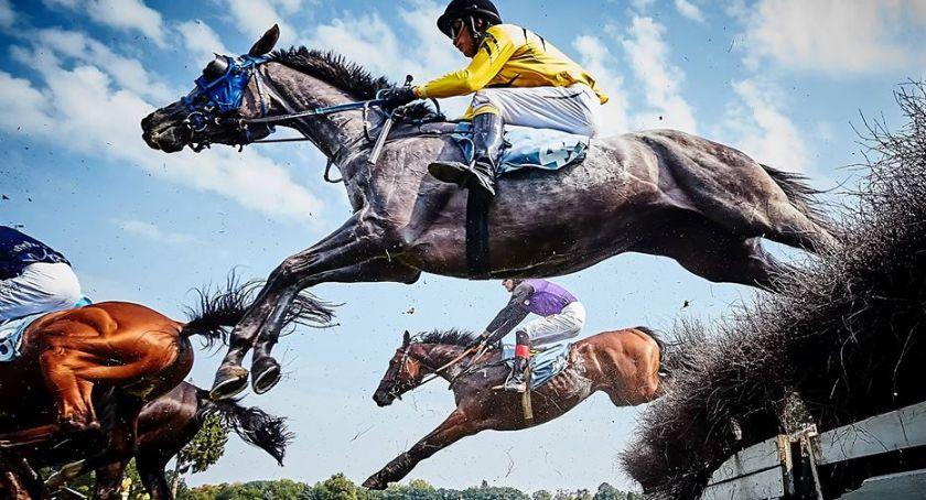 Wyścigi konne, Dzień Czeski dzień sezonu Partynicach Wyścigi Konne - zdjęcie, fotografia