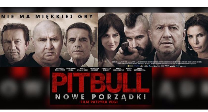 Film, Pitbull - zdjęcie, fotografia