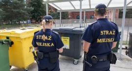 Straż Miejska Wrocławia przypomina - od 15 listopada do 1 grudnia 2019r.trwa deratyzacja