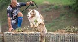 Sześć nóg - dwa serca - jedno zwycięstwo! Policjant i jego pies Bono razem startują w zawodach