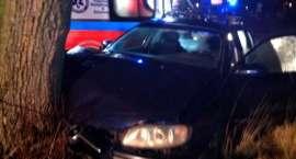 Uderzył w drzewo i wpadł do rowu – pijanego kierowcę zatrzymali policjanci