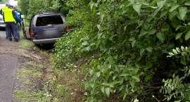 Kierowca zginął po zderzeniu z danielem. Zwierzę wskoczyło do samochodu przez przednią szybę