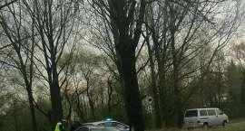 Wypadek na trasie Strzelin-Ząbkowice Śląskie