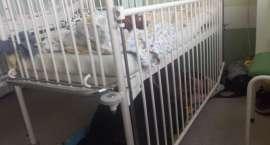 Matka śpi pod szpitalnym łóżkiem. Zdjęcie z Jeleniej Góry obiega internet!