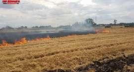 Spłonęły dwa hektary zboża pod Wrocławiem!