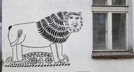 Artyści i mieszkańcy Wrocławia zmieniają swoje podwórka