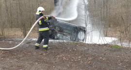 Auto spłonęło po uderzeniu w drzewo