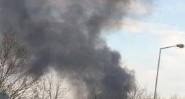 Płonęły altanki na działkach przy Klecińskiej
