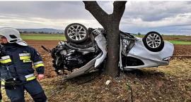 Kierowca cudem uniknął śmierci! Jego auto zawinęło się na drzewie.