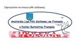 Amatorska Ligi Piłki Siatkowej
