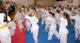 Ciosy karate ćwiczyłem z ... Mikołajem