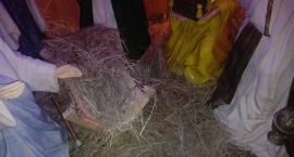 Zdewastowano i okradziono szopkę w Wierzbicy. Komu przeszkadzała? [FOTO]