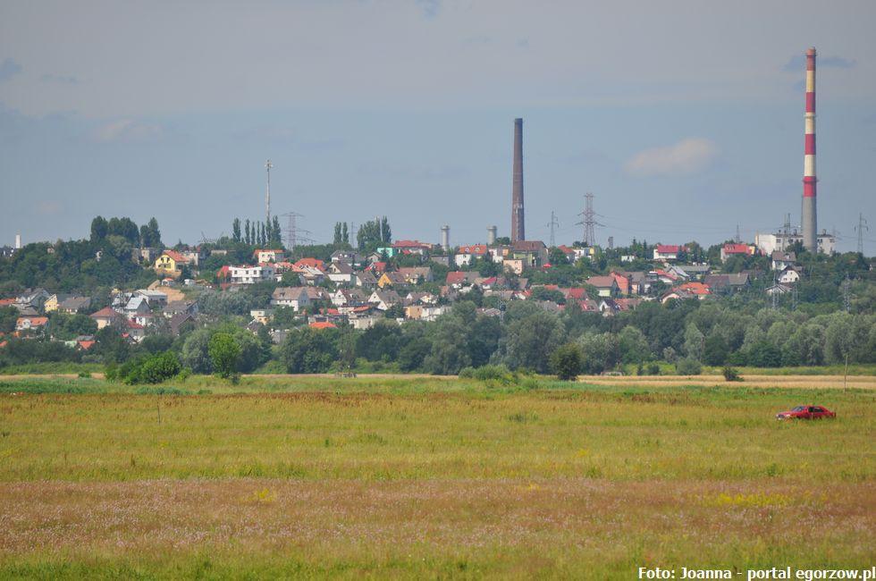 Bezpieczeństwo, podgorzowskiej gminie Bogdaniec składowany obornik rejonu ptasiej grypy - zdjęcie, fotografia