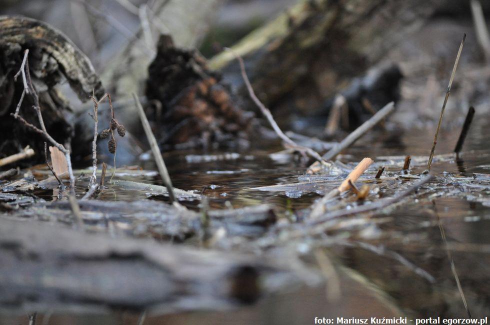 Inwestycje infrastruktura, Zbiorniki wodne wkrótce mają zyskać wygląd - zdjęcie, fotografia