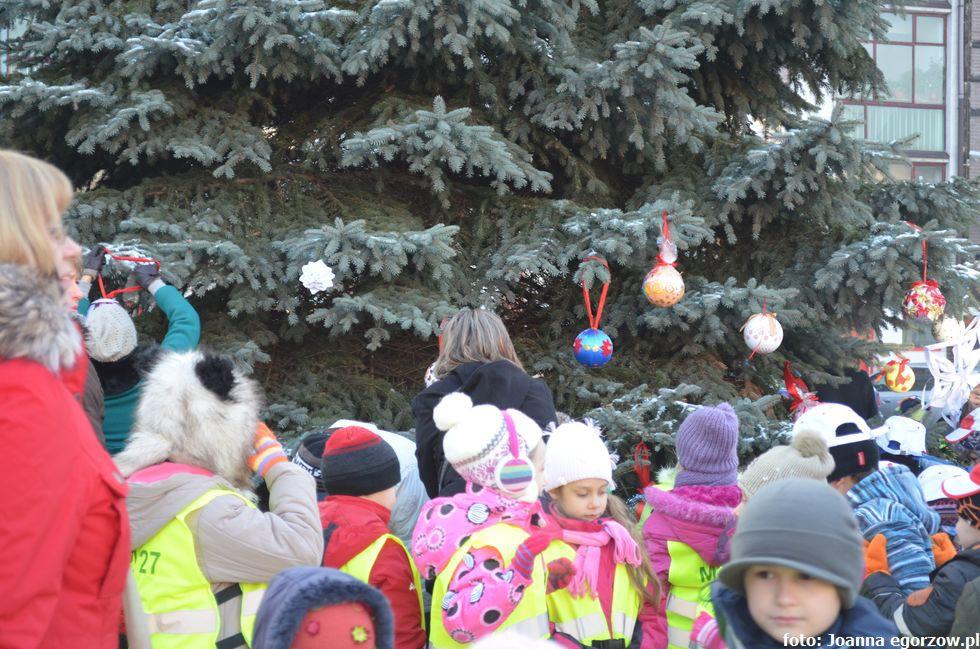Szkoły - edukacja , Magistrat ogłosił nazwiska dzieci które dostały żłobka Maczka - zdjęcie, fotografia