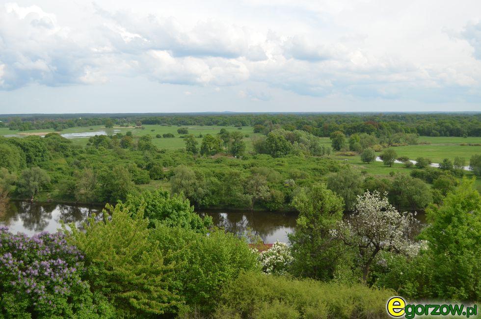 Radni , Kilkudziesięciu producentów drobiu województwa lubuskiego spotkaniu służbami wojewody - zdjęcie, fotografia