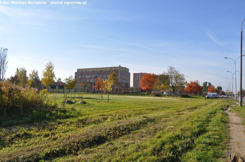 Szpitale - Zdrowie , Europejski Tydzień Testowania listopada - zdjęcie, fotografia