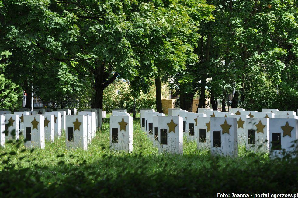 Bezpieczeństwo, wyszukiwarka miejsc pochówków cmentarz gorzow - zdjęcie, fotografia