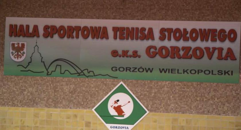 Koniec serii. Gorzovia przegrała w Gdańsku