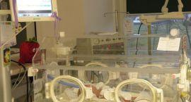 Światowy Dzień Wcześniaka w gorzowskim szpitalu