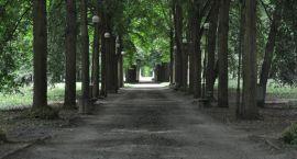 Zaprezentowano wstępną koncepcje rewitalizacji parku Wiosny Ludów