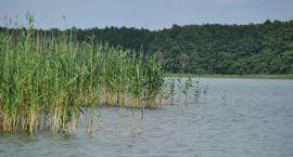 Kompleks nad jeziorem Nierzym nie cieszył się popularnością jak w latach ubiegłych