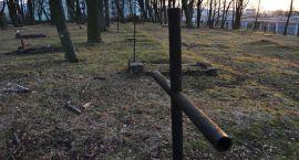 Archeolodzy odsłonili grób podczas remontu ul. Warszawskiej