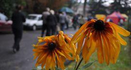 Jesienny Kiermasz Ogrodniczy w niedzielę, 25 września