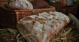 Lubuskie Święto Chleba w Bogdańcu