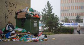 W sobotę wieczorem paliły się śmieci w podgorzowskim Chróściku