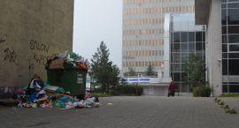 Trzydniowa akcja zbiórki odpadów gabarytowych w Gorzowie